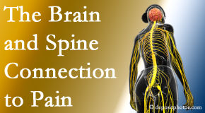 Poulin Chiropractic of Herndon and Ashburn shares at the connection between the brain and spine in back pain patients to better help them find pain relief.