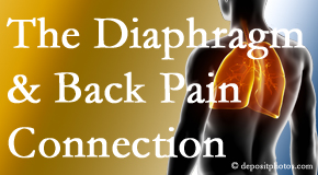 Poulin Chiropractic of Herndon and Ashburn knows the relationship of the diaphragm to the body and spine and back pain.