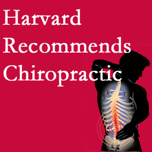 Poulin Chiropractic of Herndon and Ashburn offers chiropractic care like Harvard recommends.