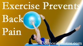 Poulin Chiropractic of Herndon and Ashburn suggests Ashburn back pain prevention with exercise.