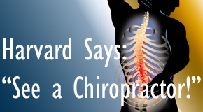 Ashburn chiropractic for back pain relief urged by Harvard